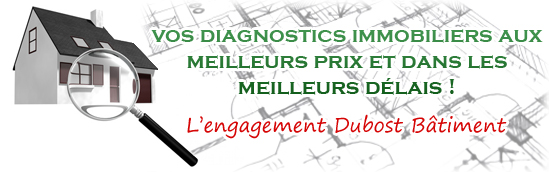 Diagnostic immobilier Appoigny